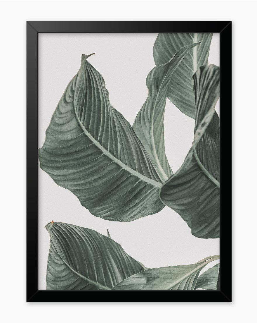 Quadro Nature Green III