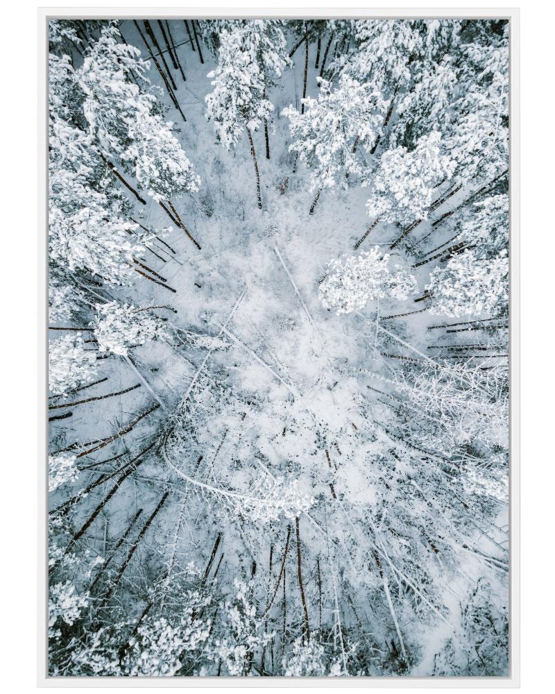 Quadro Neve na Floresta