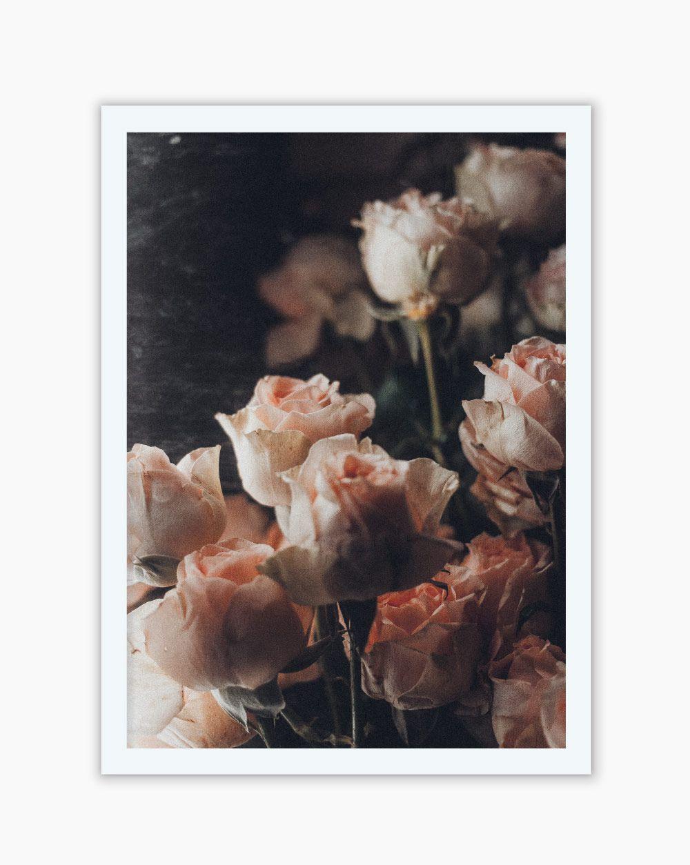 Quadro Peach Roses