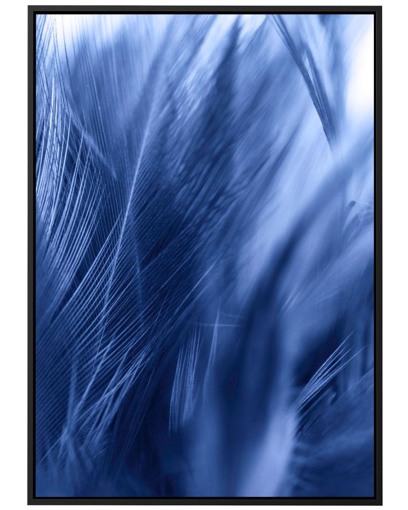 Quadro Pena Azul II
