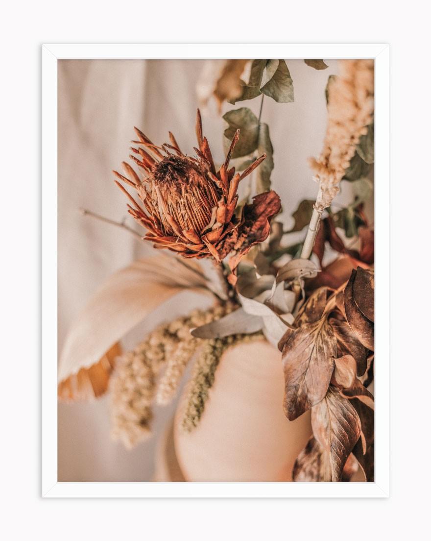 Quadro Protea