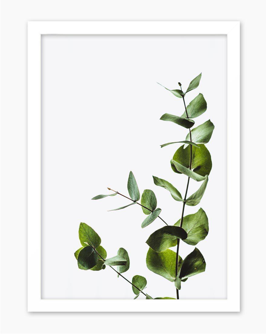 Quadro Slow Life Green