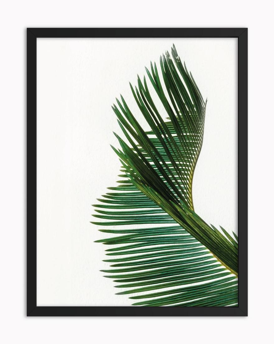 Quadro Tropical Green V