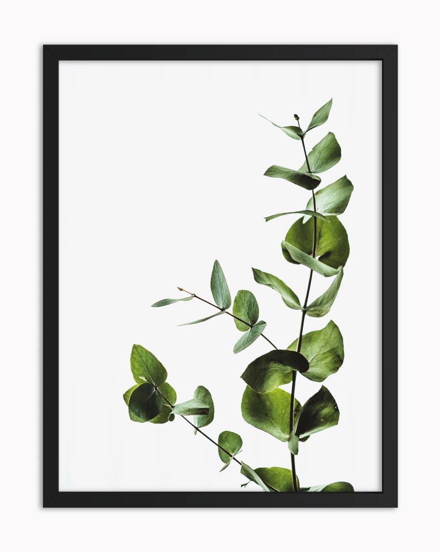 Quadro Tropical Green VI