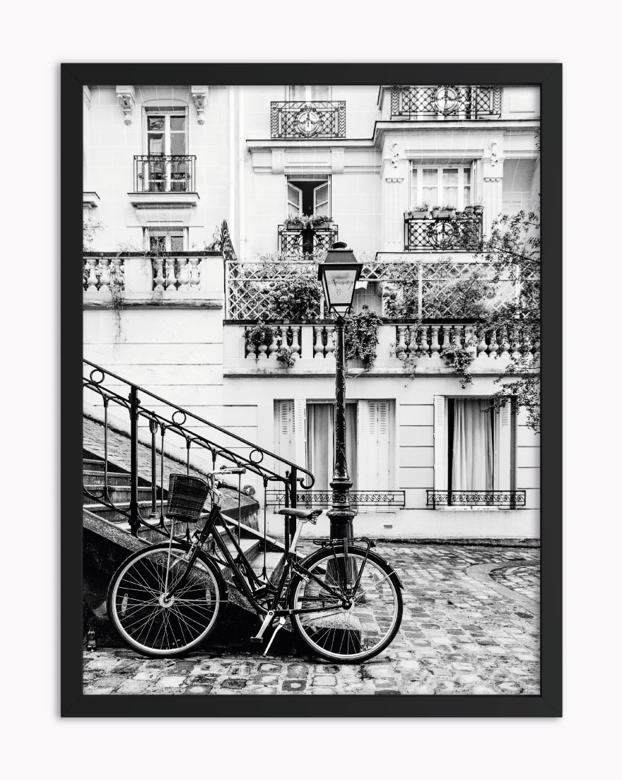 Quadro Vintage Bike