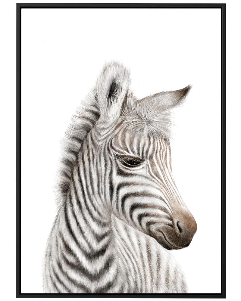 Quadro Zebra Baby