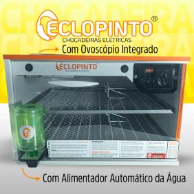 Chocadeira Automática - 200 Ovos + Ovoscópio e Água Automática