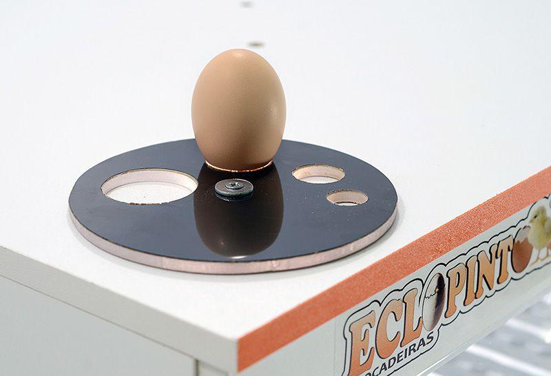 Chocadeira Eclopinto - 120 Ovos + Ovoscópio Giratório + Viragem Automática