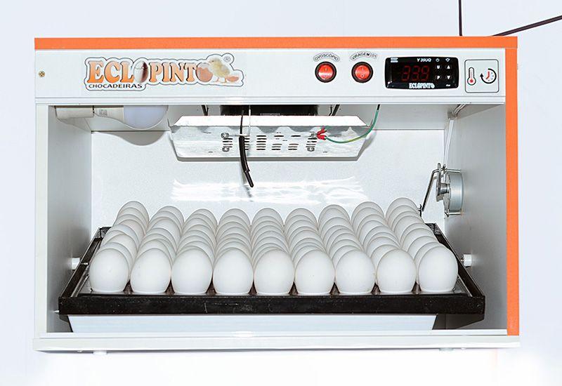 Chocadeira Eclopinto - 75 Ovos + Ovoscópio Giratório + Viragem Automática (Angular)