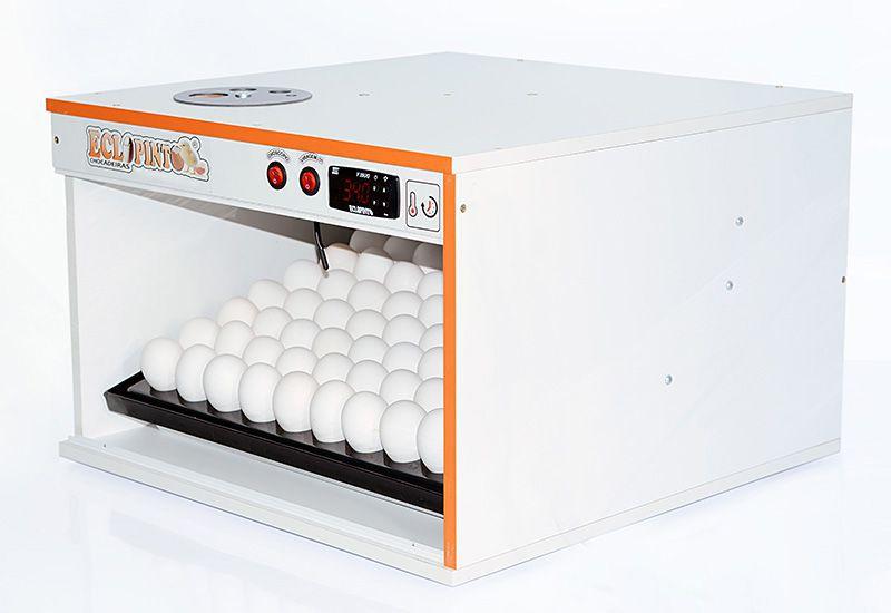 Chocadeira Eclopinto - 81 Ovos + Ovoscópio Giratório + Viragem Automática (Angular)