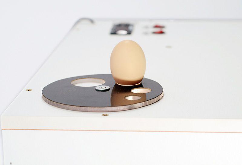 Chocadeira 90 Ovos + Ovoscópio Giratório, Lançamento 2019