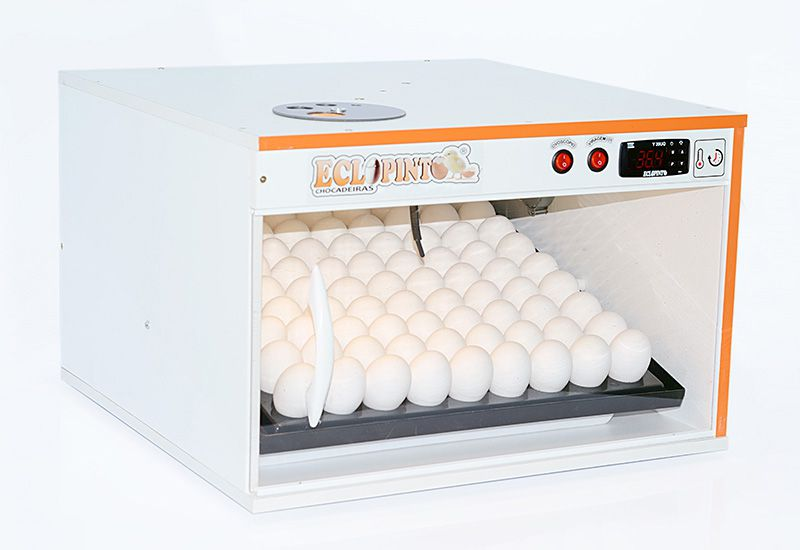 Chocadeira Eclopinto -72 Ovos + Ovoscópio Giratório + Viragem Automática (Angular)