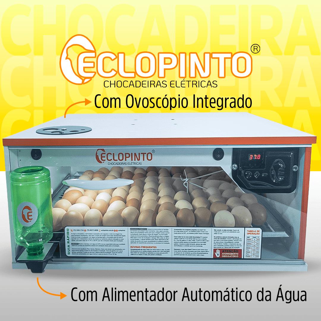 Chocadeira Automática - 130 Ovos + Ovoscópio e Água Automática