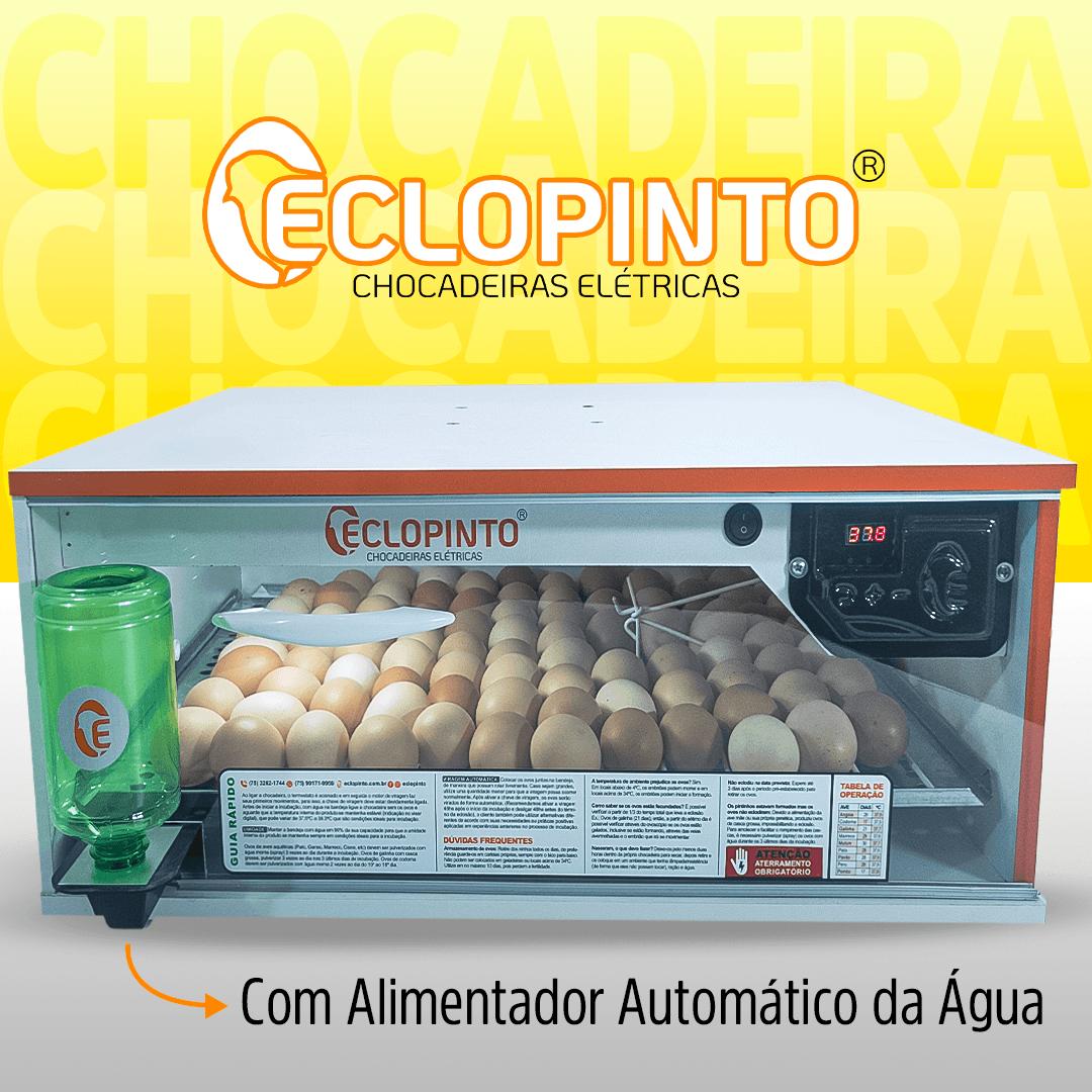 Chocadeira Automática - 50 Ovos + Água Automática