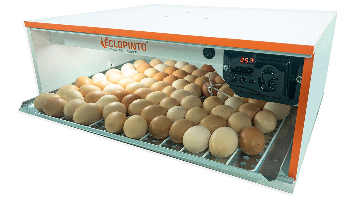 Chocadeira Automática - 56 Ovos + Água Automática