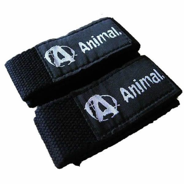 Strap Academia Animal