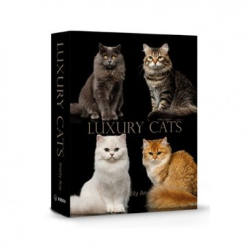 Book Box Luxury Cats