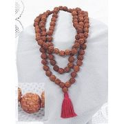 Japamala da India em Rudraksha (5 gomos)
