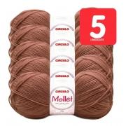 Pacote Lã Mollet 100g com 5 unidades