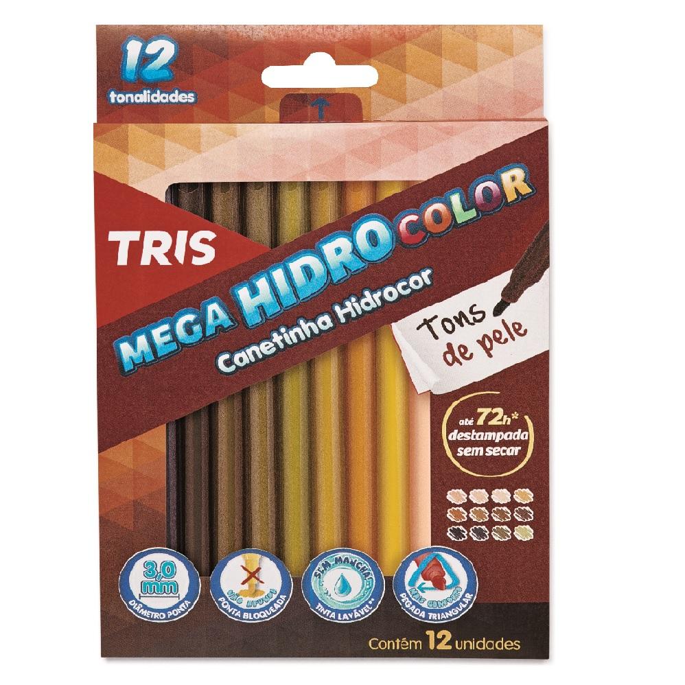 Canetinha Hidrocor Tons de Pele com 12 Unidades - Tris
