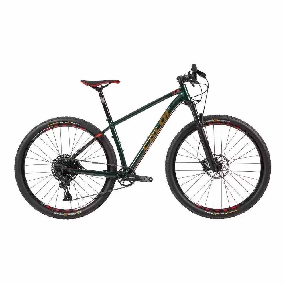 Bicicleta Caloi Elite T/19  Sram Sx Aro29 12 V 2020 Verde