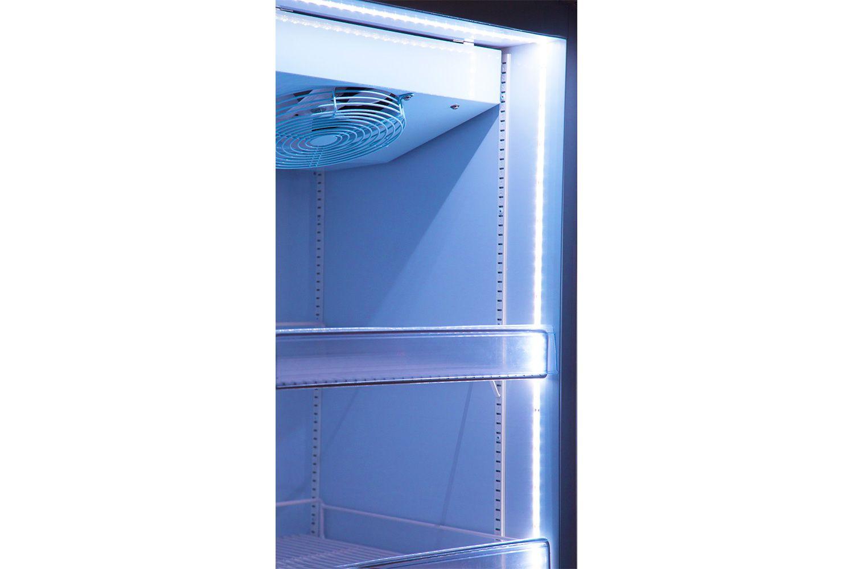 Expositor 550 litros 1 porta para congelados até -18 graus  - Zero Grau Store