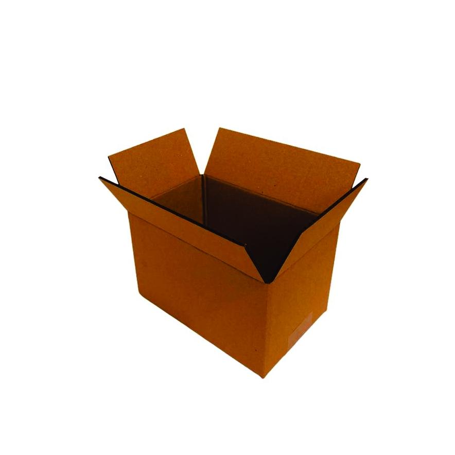 10 Caixas de Papelao (19X12X12)cm - Sedex / Pac / Correios