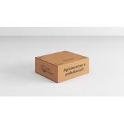 100 Caixas de Papelao Impressa (25X20X10)cm - Sedex / Pac / Correios