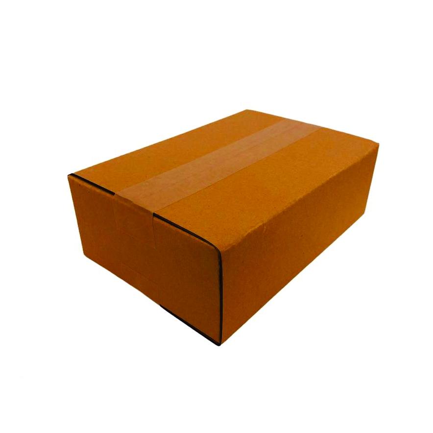 Caixa de Papelão 27x18x9cm