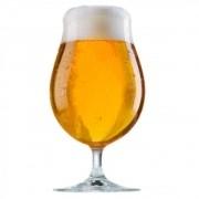 Kit de Insumos Blonde Ale - 30L
