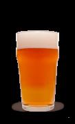 Kit de Insumos Pale Ale