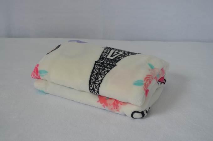 Cobertor Microfibra Bebê Paris