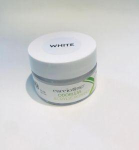 Pó Acrilico Acrylic Powder Odorless 14g - White