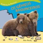 HISTORIAS DA FLORESTA - OS GEMEOS BAGUNCEIROS