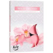 Aroma Orquídea Selvagem 6 unid.