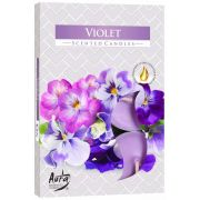 Aroma Violeta 6 unid.