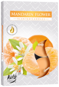 Flor de Tangerina (6 unidades)