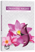Noite Oriental (6 unidades)