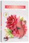 Flor de cacto (6 unidades)