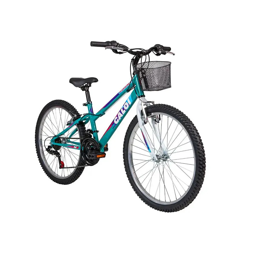 Bicicleta Juvenil Caloi Florença Aro 24
