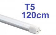 KIT 5 LÂMPADAS LED TUBULAR T5 120CM S/CALHA HO BRANCO FRIO LEITOSA COM PLUGS 6000K