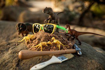 Óculos de Sol Goodr - Peeping Tim s Dino Fetish