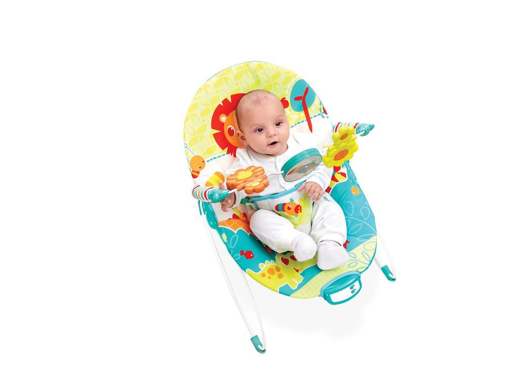Cadeira Vibratória De Descanso E Musical Sinfonia Pássaro Mastela  - Encanto Baby