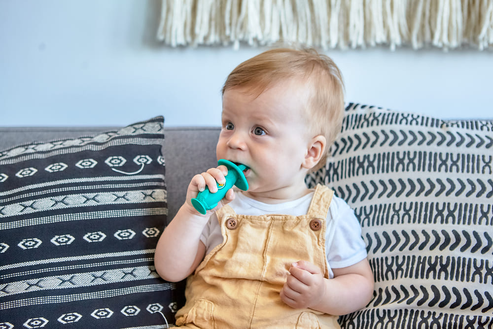 Escova Massageadora Infantil Bebe Silicone Livre de BPA Marcus & Marcus Elefante  - Encanto Baby