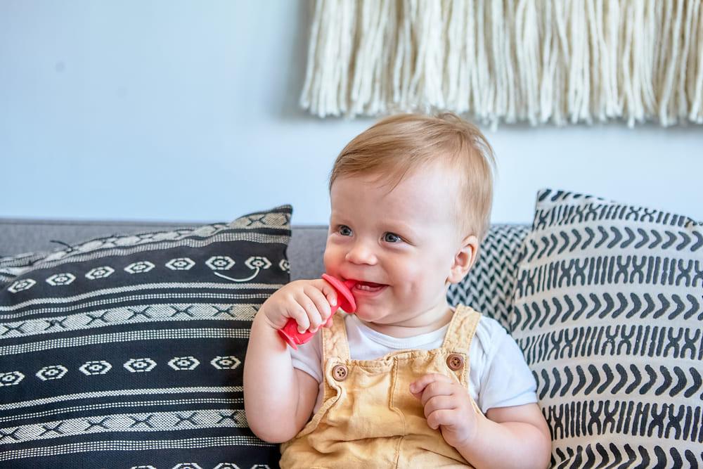 Escova Massageadora Infantil Bebe Silicone Livre de BPA Marcus & Marcus Leãozinho  - Encanto Baby