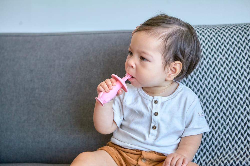Escova Massageadora Infantil Bebe Silicone Livre de BPA Marcus & Marcus Porquinho  - Encanto Baby