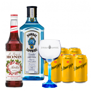 Bombay Sapphire 750ml, Monin Cranberry 700ml, Schweppes Tônica 6un 350ml e Taça Oficial Cristal Bombay