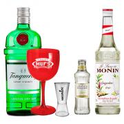Drink in House - 1un Gin Tanqueray + 1un Monin Gengibre + 1un Taça Personalizada + 3un Água Tônica London Essence Classic + 1 Dosador Monin