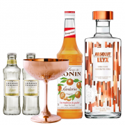 Drink In House - Absolut Elyx 750ml, Monin Tangerina 200ml, 6un London Essence Classic e Taça Oficial Bronze Premium