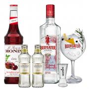Drink in House - Beefeater 750ml e Monin Cereja 700ml com 2un de Tônica London Essence, Taça Oficial Cristal Beefeater e Dosador Monin